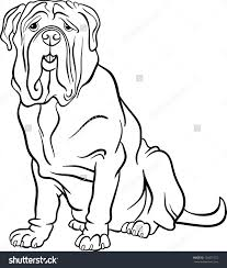 Mastiff Animal Coloring Pages Beautiful Dog Breeds Adult Coloring
