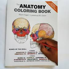 Wynn Kapit Anatomy Coloring Book Best The By Lawrence M Elson And
