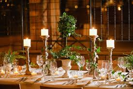 Rustic Country Wedding Reception Decorations Table Centerpieces With Small Green Plants And Candles On Long