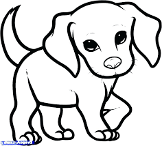 Beagle Coloring Pages Corgi Page Magnificent Puppy