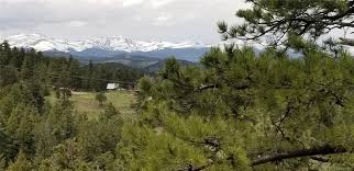 100 Homes For Sale Nederland Co 1352 Gross Dam CO 80403 Home For Sale At