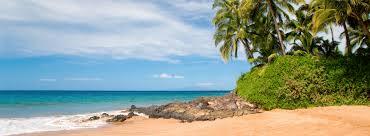 100 The Beach House Maui Oceanfront
