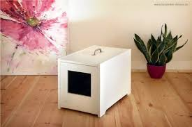 Plants For The Bathroom Feng Shui by Feng Shui Advice U2013 Find The Best Place For The Litter Box