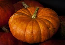 Schnepf Farms Halloween by Pumpkin U0026 Chili Party Schnepf Farms Food And Drink Halloween