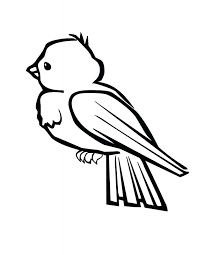 Beautiful Birds Coloring Book Online Pages Gallery Pdf