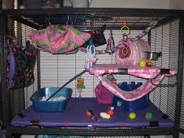bedding the rat lady