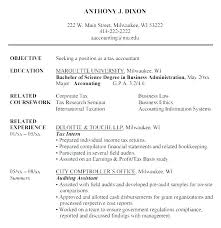 Example Resume Profile Statements Sample For Resumes Statement Examples Bri