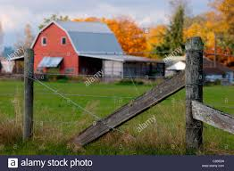 Rustic Barbed Wire Fence With Classic Red Barn And Buidings Behind ... Tammie Dickersons Arstic Journey September 2014 The 7msn Ranch Breakfast From Behind The Barn John Elkington Caroline From 0 To 60 In Well Years Sunrise Behind A Barn On Foggy Morning Stock Photo Image 79809047 Red Trees 88308572 Untitled Document Our Restoration Preserving History Through Barnwood Rebuild Tornado Forming Old Royalty Free Images Sketch For By Hbert Sidney Palmer At Consignorca Shed Olper And Fustein Innervals Vals Valley Towering Sunflower Growing Beside Bigstock