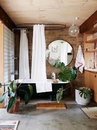 Pot Plants For The Bathroom by Bathroom Design Wonderful Plant Eater Montbretia Plant Indoor