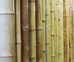 100 Bamboo Walls Ideas Glamorous Wall Background Texture Lines Design