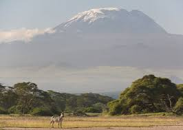 Mount Kilimanjaro Is An Unforgettable Climb