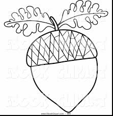 beautiful acorn clip art black and white with acorn coloring pages and sally acorn coloring pages