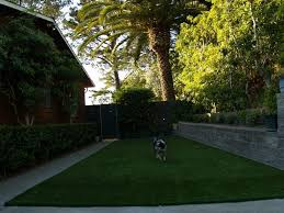 Artificial Grass Dog Run Installation Projetcs In California Dogfriendly Back Yard Dogscaped Yards Pinterest Dog Superior Fence Cstruction And Repair Kennels Roseville Ca Domestically Dobson Run Fun Better Than A Ideas For Your Fourlegged Family Backyard Kennel Side Our House Projects Yards Artificial Turf Runs Pet Synthetic Of Illinois Youtube How To Build A Guide Install Image Detail Black Backyards Awesome 25 Best About Outdoor On