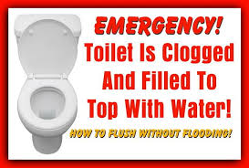 toilet is clogged and filled to top with water how to flush