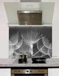 Dandelion Clocks Printed Glass Splashback From DIYSplashbackscouk