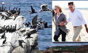 100 Seabirds Food Truck Mitt Romney And Other Millionaires On Swanky La Jolla Beach