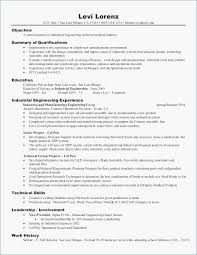Resume Example Objectives Scholarship 0d Professional Objective Statement Examples Customer Service