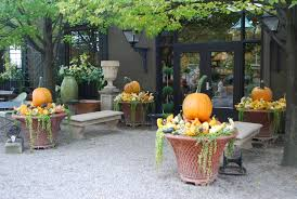Stages Of Pumpkin Plants by Fall Container Arrangements Dirt Simple