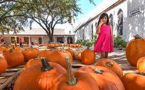 Petes Pumpkin Patch Lasalle by Laredo Morning Times Home Facebook