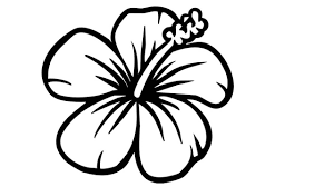 How to Draw a Flower Draw a Flower Step by Step Video