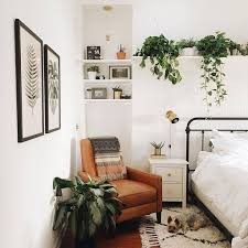 Delightful Ideas Plants In Bedroom 17 Best About On Pinterest