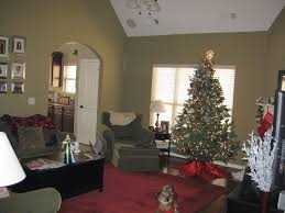 Green Living Room Carpet Beautiful Lovable Sage Decorating Ideas Using Red