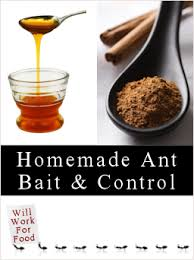 Homemade Ant Killers Recipes & Tips TipNut