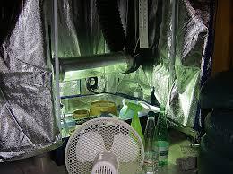 chambre culture complete chambre de culture complete 250w meilleur de humidificateur chambre