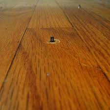Fix Squeaky Floors Under Carpet by How To Fix Squeaky Wood Floors From Below Choice Image Home