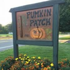 Tims Pumpkin Patch by Syracuse Ny Hulafrog Browse Businesses