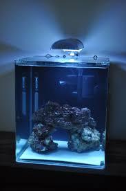 aquarium nano eau de mer eclairage aquarium eau de mer led aquarium poisson archives page