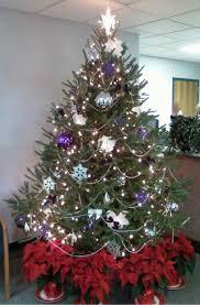 Fraser Christmas Tree Care by Becktreefarms Tree Care