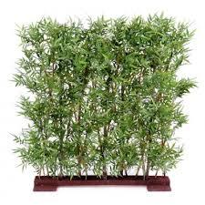 entretien des bambous en pot quelles plantes sans entretien choisir pour vos bureaux