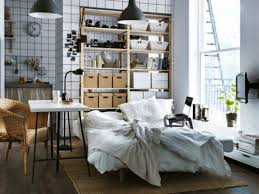 ApartmentsPretentious Design Ideas Studio Apartment Storage For Tiny My Square Feet Spec 200 500