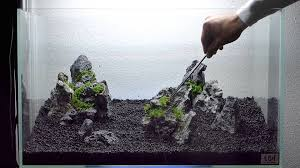 Setting Up Nature Aquarium Aquascape, Iwagumi 5A - YouTube How To Set Up An African Cichlid Tank Step By Guide Youtube Aquascaping The Art Of The Planted Aquarium 2013 Nano Pt1 Best 25 Ideas On Pinterest Httpwwwrebellcomimagesaquascaping 430 Best Freshwater Aqua Scape Images Aquascape Equipment Setup Ideas Cool Up 17 About Fish Process 4ft Cave Ridgeline Aquascape A Planted Tank Hidden Forest New Directly After Setting When Dreams Come True