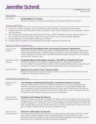 20 Experienced Web Developer Resume Template Best Templates Rh Jijikichi Com Competency Based Example Skilled Labor Samples