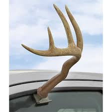Truck Antlers™ - 155196, Accessories At Sportsman's Guide Photos Opening Day Of Wyomings Shed Hunting Season Outdoor Life Holiday Lighted Car Antlers Pep Boys Youtube Wip Beta Released Beamng Antlers The Cairngorm Reindeer Herd Dump Truck Full Image Photo Bigstock Atoka Ok Official Website Meg With Flowers By Myrtle Bracken Vw Kombi Worlds Best And Truck Flickr Hive Mind Amazoncom Bluegrass Decals Show Me Your Rack Deer May 2009 Bari Patch My Antler Base Shift Knob Elk Pinterest Cars Buck You Vinyl Window Decal Nature Woods Redneck