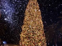 Newport Beachs Fashion Island Christmas Tree Lighting Goes Old School