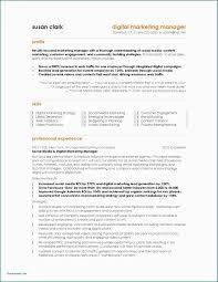 Sample Resume International Marketing Manager Objective Thevillas
