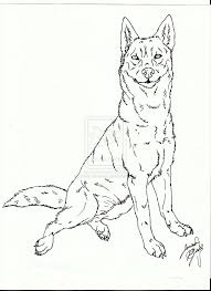Nice Realistic Husky Coloring Pages