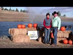 Chatfield Pumpkin Patch Hours by Best Pumpkin Patches And Corn Mazes Near Denver 2016 Axs