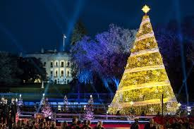 The National Christmas Tree Is Seen Near White House Nov 30 After 95th Annual Lighting Ceremony In Washington CNS EPA Jim Lo Scalzo