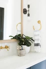 Best Bathroom Pot Plants by Guide To Our Go To Potted Plants U2014 Studio Mcgee