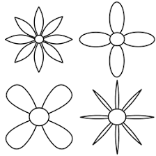 Drawing the initial petals of each flower