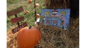 Napa Pumpkin Patch Hours by Popple Ridge Pumpkins Patch Keeps Family Tradition Alive