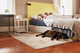 luftfeuchtigkeit im schlafzimmer optimale luftfeuchte