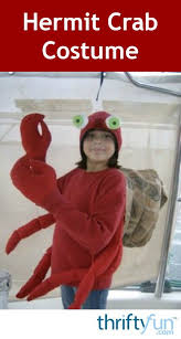 Halloween Hermit Crab by How To Make A Hermit Crab Costume Thriftyfun