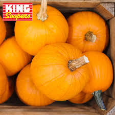 Pumpkin Patch Littleton Co by King Soopers Home Facebook