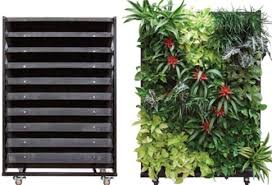 Living Walls Room Dividers Inside Plants Throughout Wall Planter