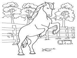 Printable Coloring Pages Horses Horse Jumping Arabian Free Race